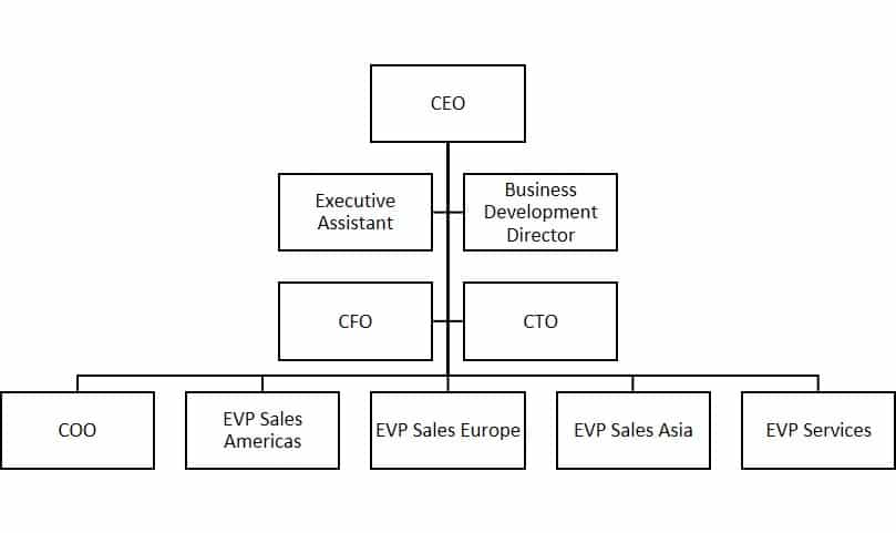 Example of management team structure #1
